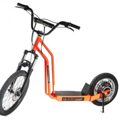 CityWiel BASIC, 25 km/h, 12 – 60 km dojazd